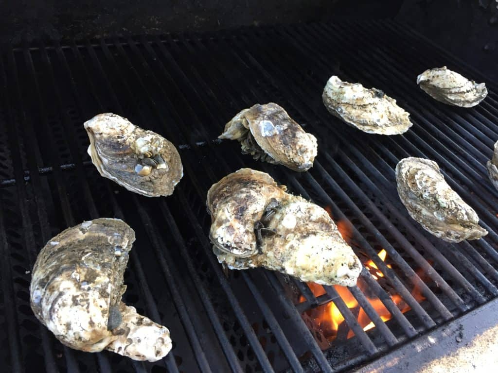 opening oysters on the grill