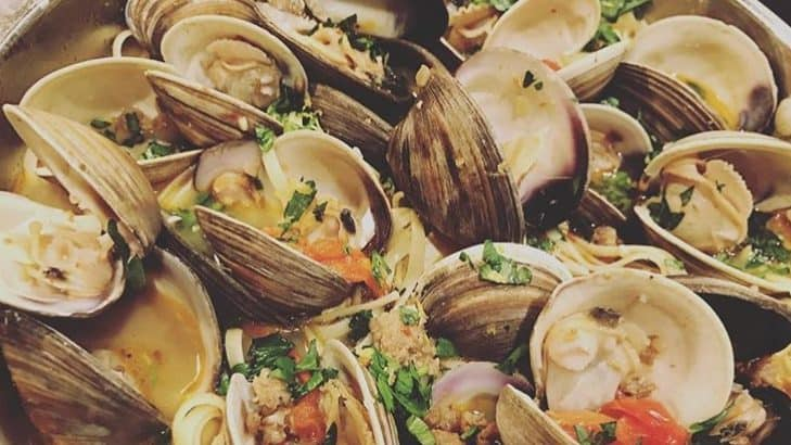 a bowl of clams in a sambuca cream sauce