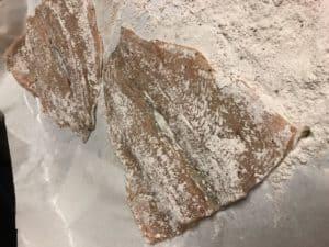 two trout filets