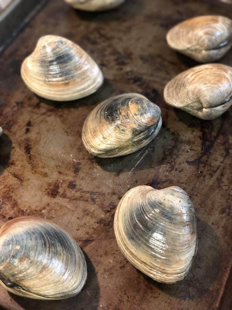 clams on a baking pan