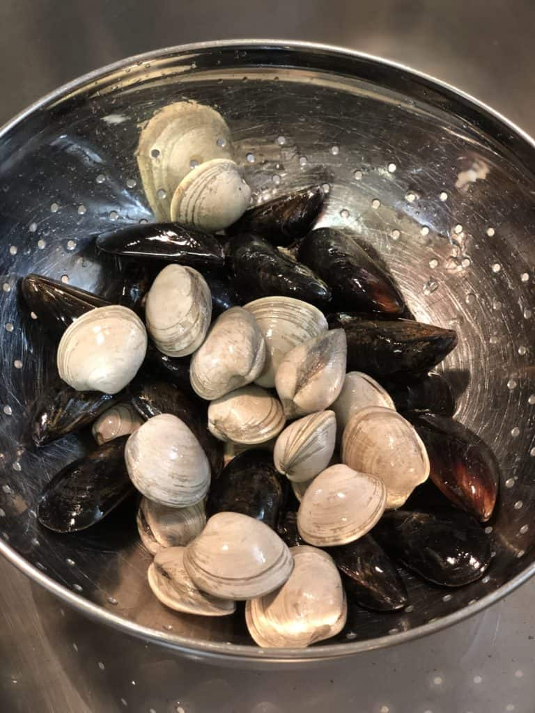 clams and mussels in a colander