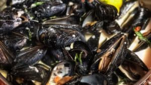 Mussels in a Sambuca Cream Sauce