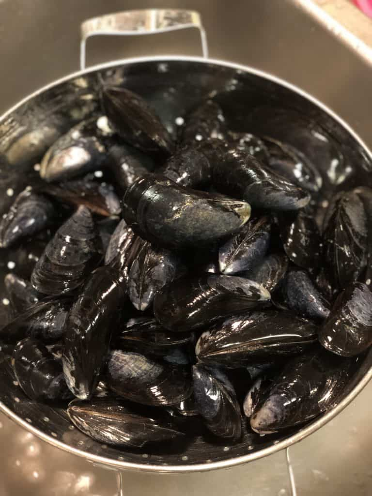 Mussels rinsed in colander