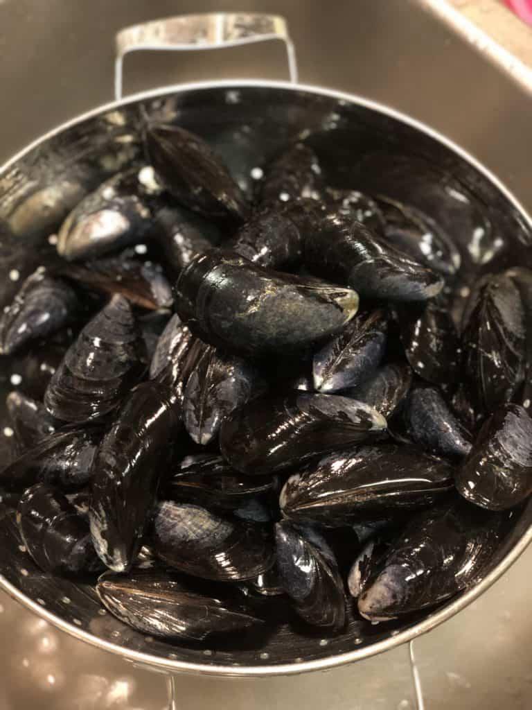 Mussels rinsed in colander