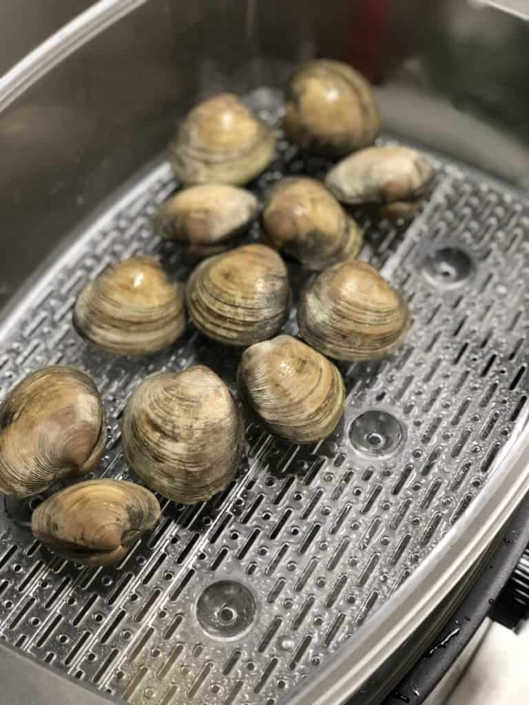 Clams steaming in a food steamer