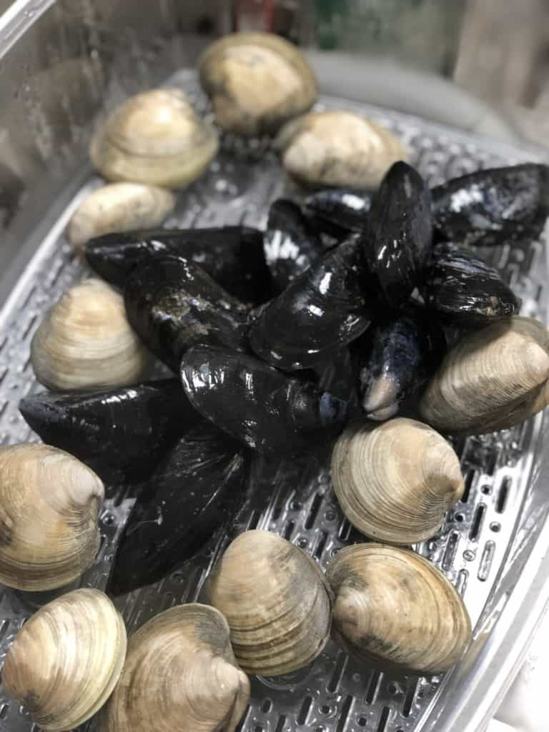 Mussels and clams steaming in an electric food steamer