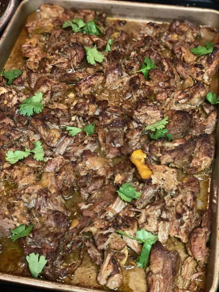 slow cooked shredded pork should that has been broiled in a baking pan and garnished with fresh cilantro