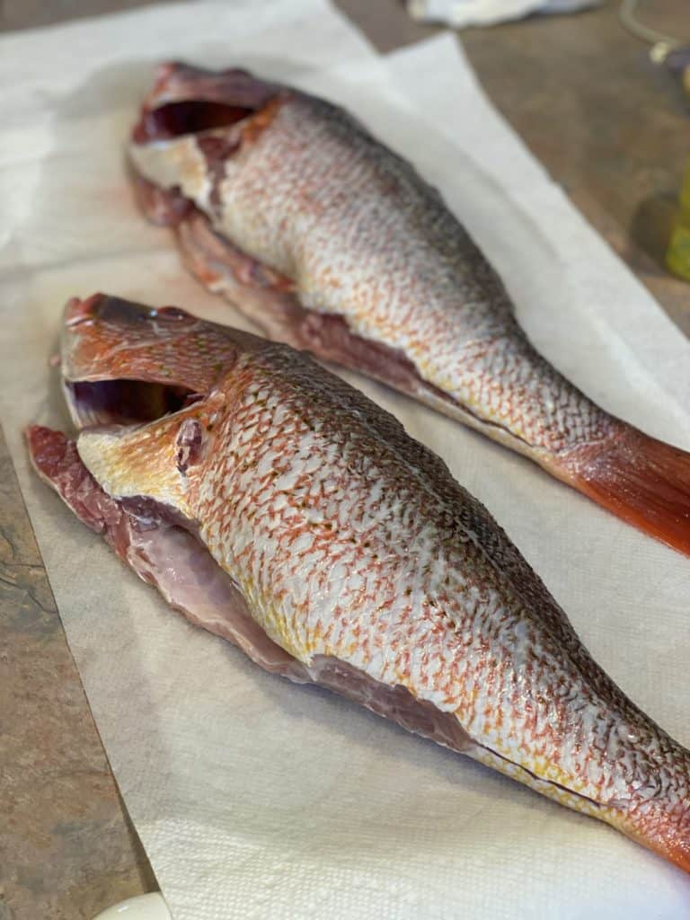 two whole red snapper