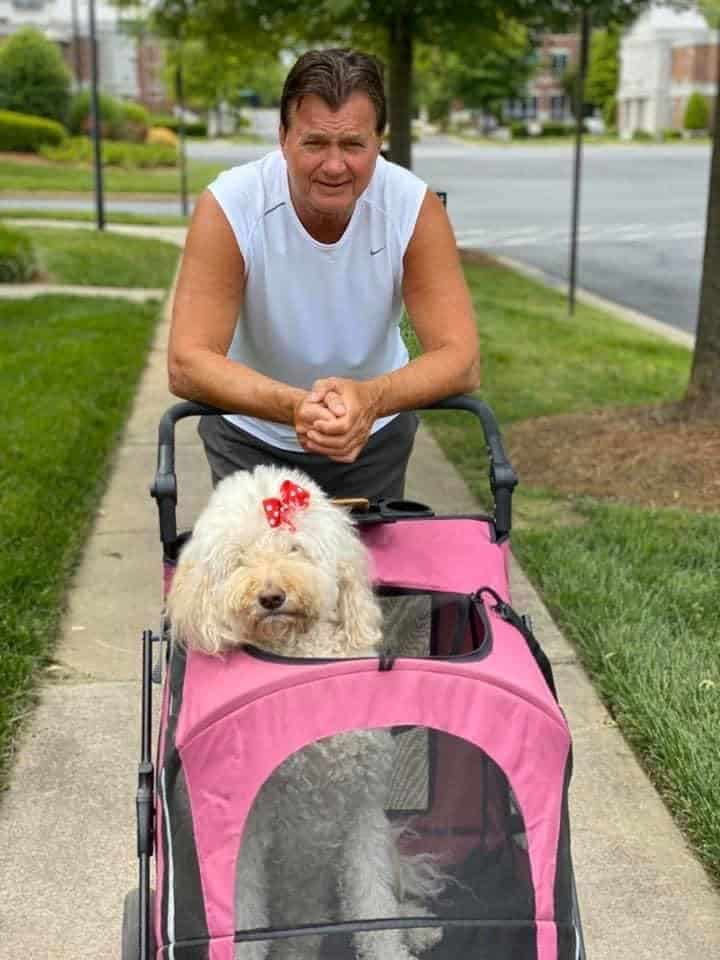 our goldendoodle viva in a stroller with her daddy