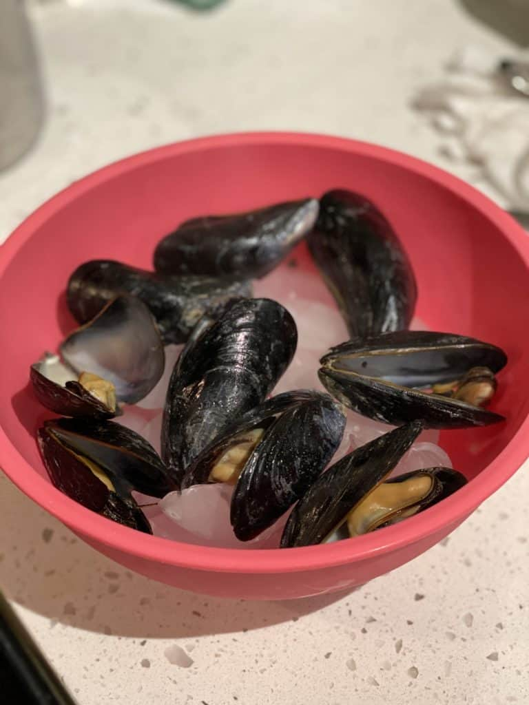 mussels in a pink bowl filled with ice